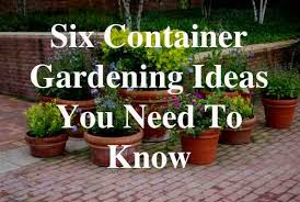 Small Picture Six Container Gardening Ideas You Need To Know