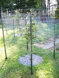 keep deer out of vegetable garden raised garden fence ideas to keep deer out deer vegetable