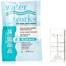 Waterworks Permanent Powder Hair Color 24 Natural Medium