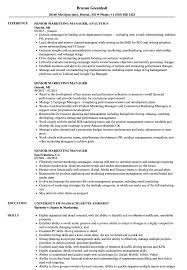 Senior Marketing Manager Resume Sample Senior Marketing Manager Resume Samples Velvet Jobs 1