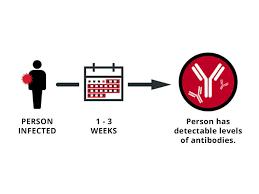 coronavirus antibos prevent
