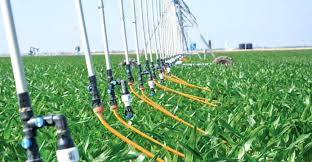 mobile drip irrigation combines advantages of subsurface and low energy precision systems says watering system drip watering system