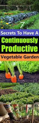 Kitchen Garden Produce 17 Best Ideas About Vegetable Gardening On Pinterest Gardening