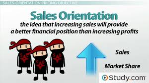 s oriented company definition examples video lesson pricing decisions profit oriented s status quo
