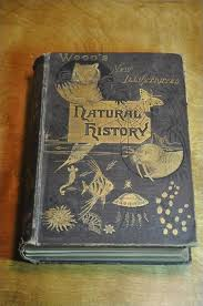beautiful old natural history book cover beautifulbooks