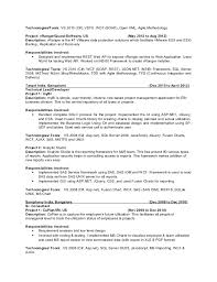Senior Project Manager Resume Example Best of Senior It Project Manager Resume Project Management Summary Example