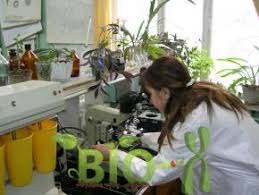 Работа над диссертацией стр  Кандидатский минимум по биотехнологии