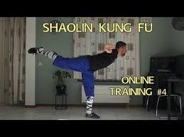shaolin kung fu training pdf 06 2021