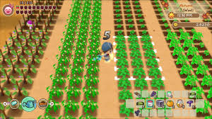 The town has essentially been deserted, but you're never one to back down from a challenge! Story Of Seasons Friends Of Mineral Town Nintendo Switch Games Nintendo