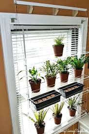 window shelf plant holder glass shelves for plants indoor garden regarding inspirations wind window plant shelf