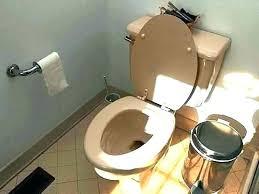 toilet backs up into shower bathtub backing up bathtub backing up sink backing up bathroom but toilet backs up into