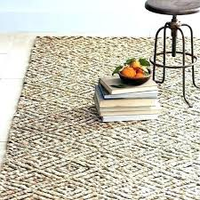 target jute rug indoor outdoor rugs at area ideal modern on threshold woven burgher platinum sisal machine woven indoor outdoor area rug round