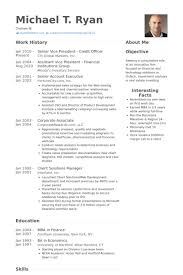 Accounting Officer Sample Resume Fascinating It Officer Resume Samples VisualCV Resume Samples Database