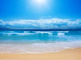 Beach Picture Beach Wallpaper Wallpapers Browse