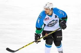 Professional Hockey: Tim Coffman and a Special College Bond ...