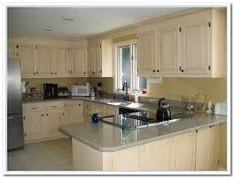kitchen cabinet paint ideasKitchen Cabinet Color Ideas Stunning 11 Kitchen Cabinet Color