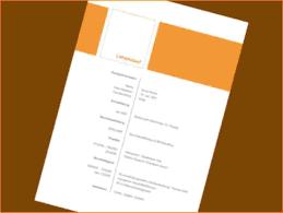 4 Lebenslauf Word Vorlage Reimbursement Format