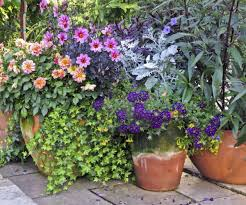 ... Large-size of Majestic Container Garden Placement Learn How To Plant A  Container Garden in ...