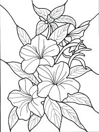 Flower Coloring Sheet Campzablaceinfo