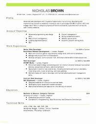 Contemporary Resume Templates Examples Graphic Design Resume