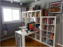 Decorations:White Comic Book Storage Ideas Smart and Simple Book Storage  Ideas For Small Spaces