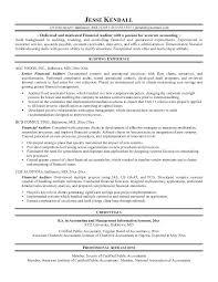 Sample Auditor Resumes Auditors Resume Top 8 Internal Auditor Resume Samples External