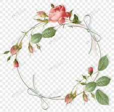 Flower Plant Botany Illustration Rose Floral Design