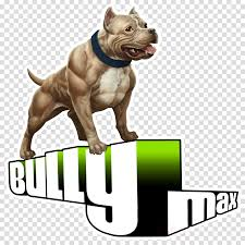 Download American Bully Food Chart Clipart American Pit Bull