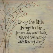 """Sometimes The Little Things In Life Mean The Most"""" Life Quote Delectable Quotes Related To Life With Pics"""