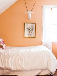peach paint colorsPeach Paint Color  Houzz