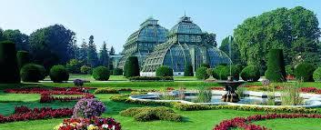 palm house garden and botanic garden