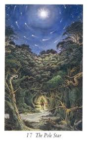 Image result for wildwood tarot pole star