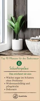 Pflanzen Fürs Badezimmer Unsere Top 10 Garten Ideen Tipps
