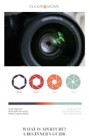 Photography 101 Lenses Light And Magnification What Is Aperture A Beginners Guide For Photographers