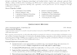 Sample Resume Of Project Manager Sample Resume For Project