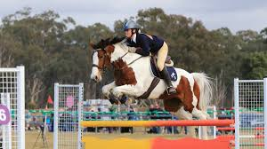 Goulburn Pony Club takes home prizes from State Championships | Goulburn  Post | Goulburn, NSW