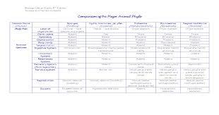 Biology Comparison Of The Major Animal Phyla Chart Pdf