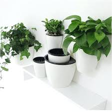 self watering container gardening beautiful garden containers diy planters wick self watering container gardens garden containers diy