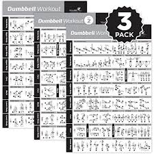 Newme Fitness Dumbbell Exercise Posters Laminated 3 Pack Includes Vol 1 2 3 Workout Strength Training Chart Build Muscle Tone Tighten Home Gym