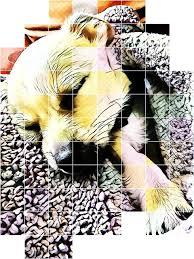 ashleytoothman Profiles on PicsArt