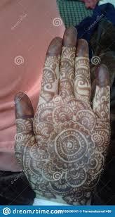Elaborate Henna Designs Mehndi Of Himachali Wedding Of Groom Stock Image Image Of