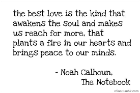 The Notebook Quotes Beauteous Noah Calhoun Ryan Gosling The Notebook Movie Quote The Notebook