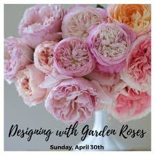 Small Picture Workshop Designing with Garden Roses Flirty Fleurs The
