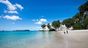 new zealand cathedral cove marine reserve on the coromandel peninsula in new zealand