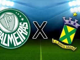 Palmeiras x Santo André: onde assistir, horário e local