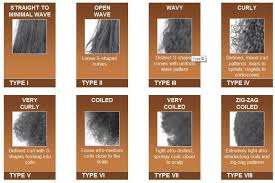 Hair Type Guide Whats Your Hair Type Black Hair Types