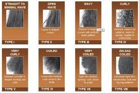 African American Natural Hair Type Chart Hair Type Guide Whats Your Hair Type Black Hair Types