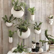 shane powers ceramic wall planters shane powers ceramic wall planters 25 indoor garden ideas
