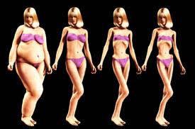 Burn The Fat Body Transformation System Tom Venuto