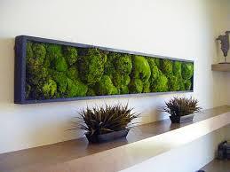 Small Picture Best 20 Moss wall ideas on Pinterest Moss wall art Moss art